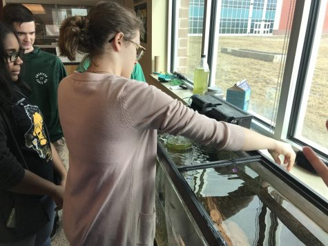 Environmental Science Takes on Aquaponics